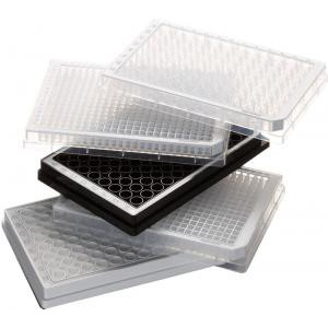 Eppendorf® Polypropylene Assay Microplates