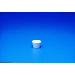 Annealing Porcelain - Thermal Scientific