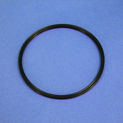 NANOpure II O-Ring Canister Gasket
